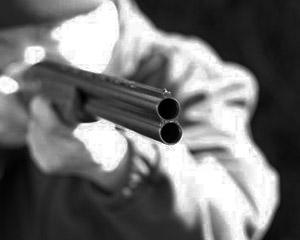 Shotguns